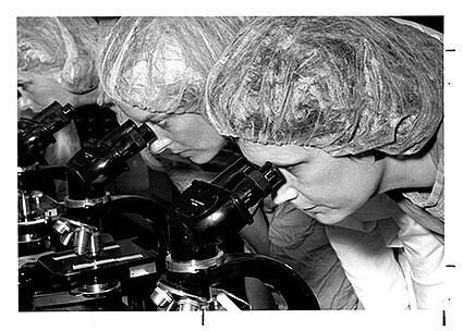 1986 Students at Microscopes