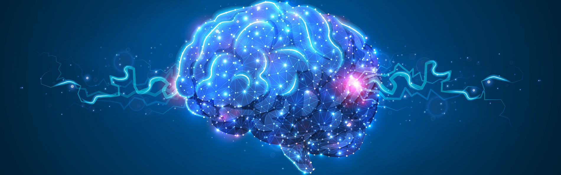 BrainImageINS1