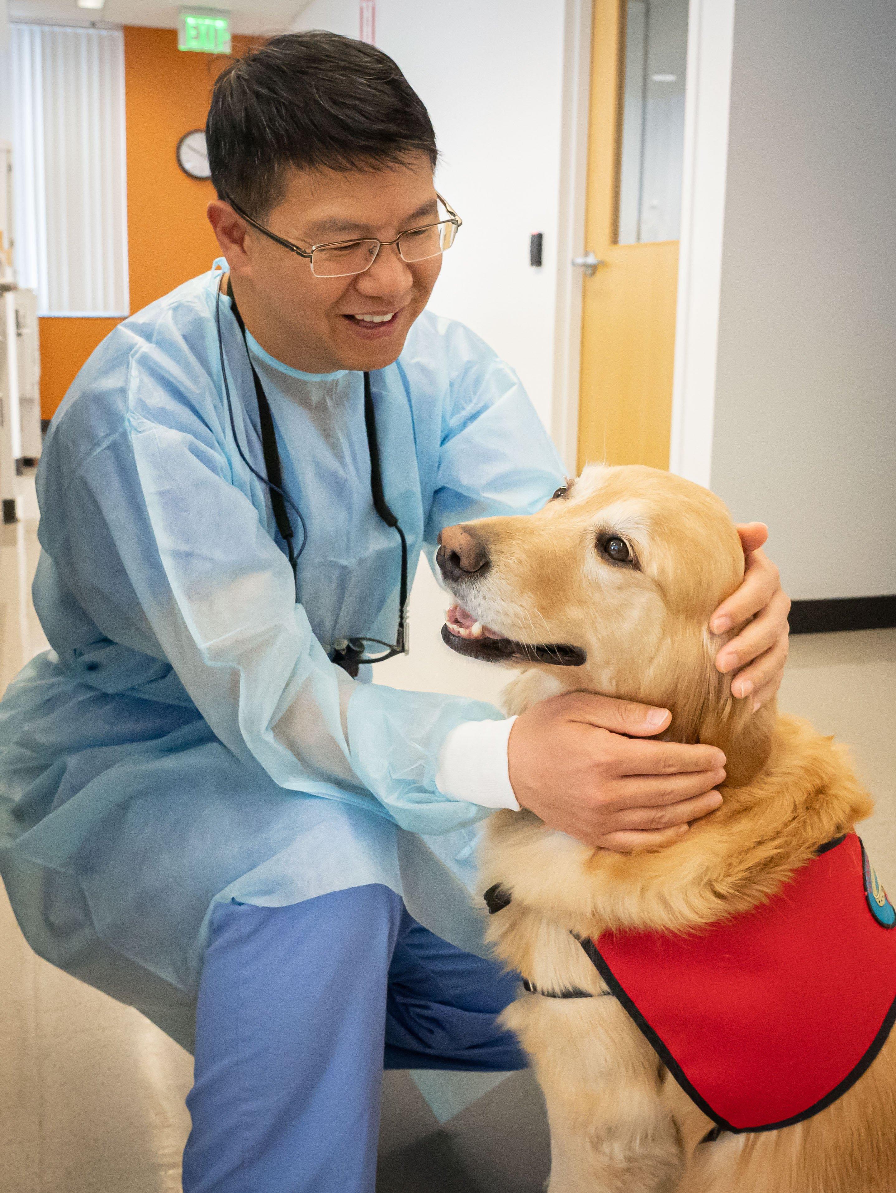 DogTherapyDentist&Dog