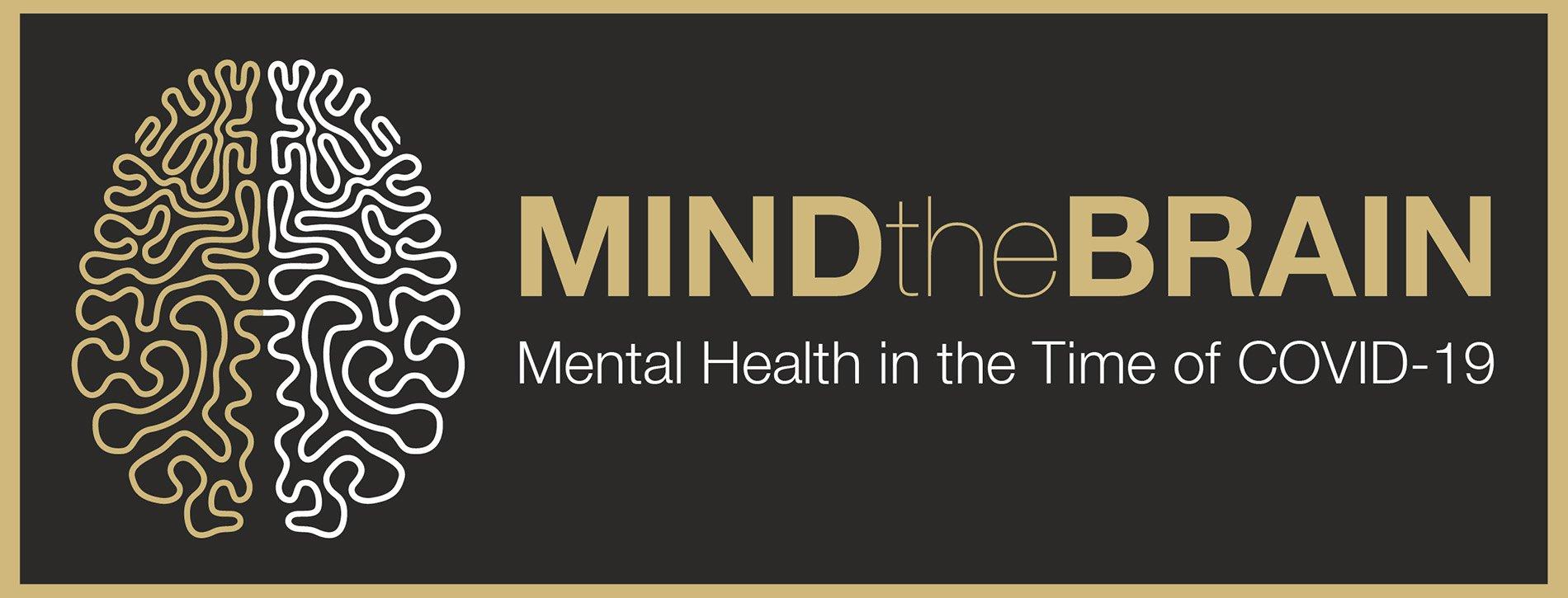 MindTheBrainINS3-1