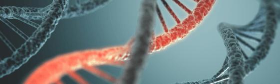 RNA hubspot