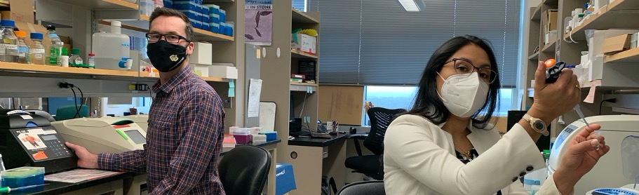 CU Dental Researchers Make Skull Face Gene Exposure