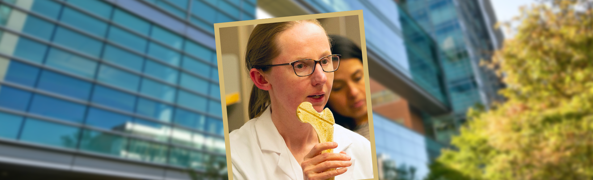 Cheryl Ackert-Bicknell, PhD - CU School of Medicine